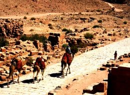 Travel To Egypt & Jordan | Tours To Egypt | Egypt Packages 2020